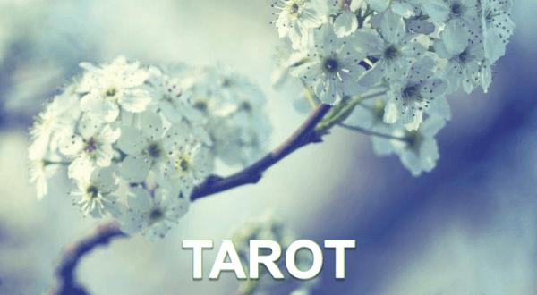 Tarot Praktijk het alternatief Bovenkarspel